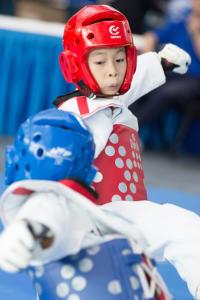 programs-competition_kyorugi
